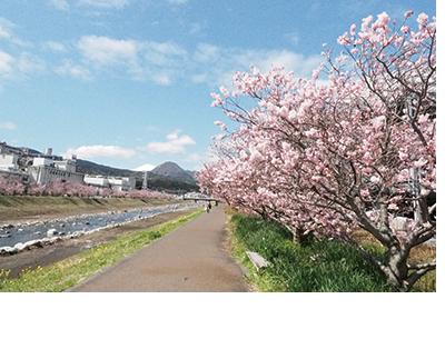春木径・幸せ道