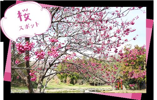 厳島湿生公園