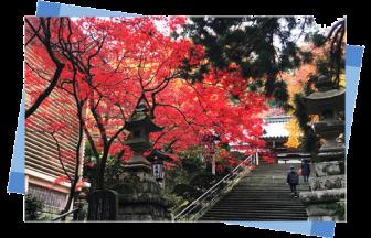 大雄山最乗寺