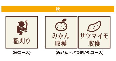 稲刈り・みかん・サツマイモ収穫