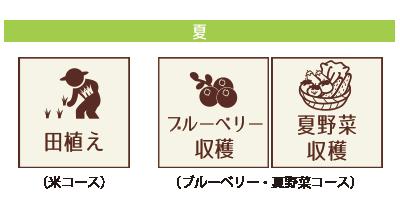 田植え・ブルーベリー・夏野菜収穫